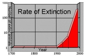 rate_of_extinction_3