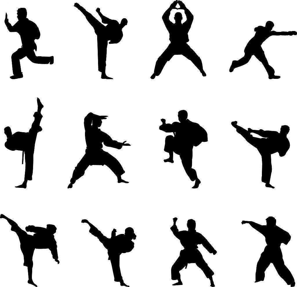 Chinese Martial Arts: Chinese Martial Arts Vs Karate