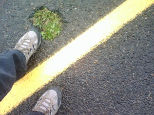 mark-straddling-the-yellow-line-by-the-pothole